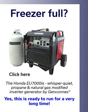 Freezer full? The Honda EU7000is - whisper-quiet, propane & natural gas modified  inverter generator by Genconnex®  Yes, this is ready to run for a very  long time!  Click here